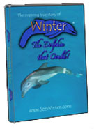 Winterthedolphin